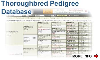 Thoroughbred Pedigree Software
